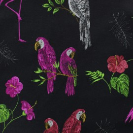 Tissu jersey Chalkboard - perroquet x 20cm