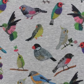 Tissu sweat Qjutie kids Garden - birds x 20cm