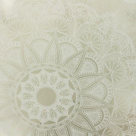 Cristal transparent 15/100 - Plastique x10cm