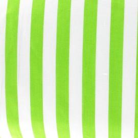 Tissu rayure vert anis