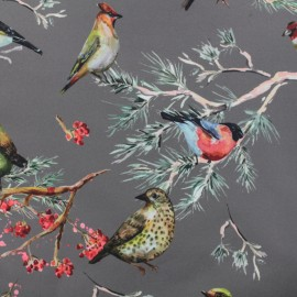 Tissu Softshell Oiseaux - taupe x 10cm