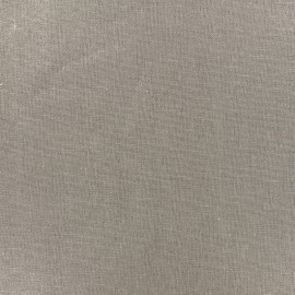 Tissu lin viscose irisé - sable x 10cm