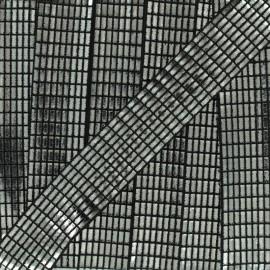 Biais fantaisie Spectacle - argent noir x 1m