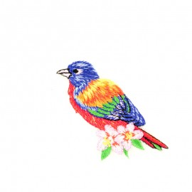 Thermocollant Oiseau tropical D