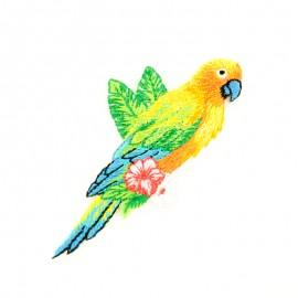 Thermocollant Oiseau tropical E