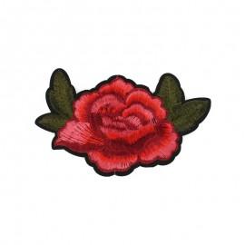 Thermocollant Rose B
