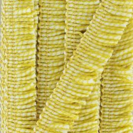 Galon à franges Joséphine 18 mm - jaune x 1m