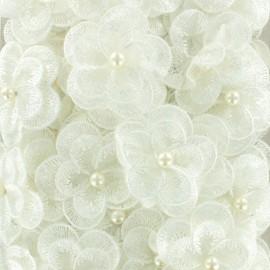 Galon fleurs brodées sur organza - blanc x 50cm