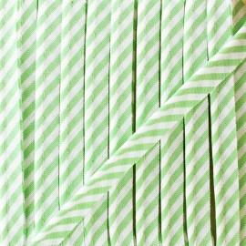 Passepoil grande rayure - vert