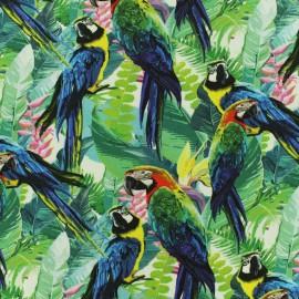 Tissu jersey Aras - vert x 17 cm
