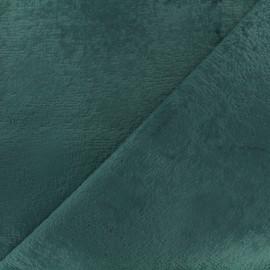 Tissu velours ras - eucalyptus x 10cm