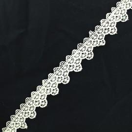 Lace guipure - ecru Scallop x 1m