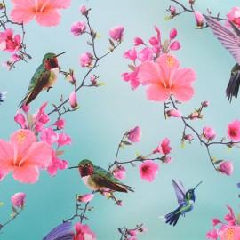 Softshell fabric – lagoon blue Colibri & Hibiscus x 10cm