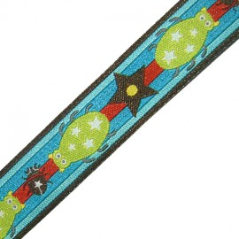 Ribbon Insect and Star - multicolored