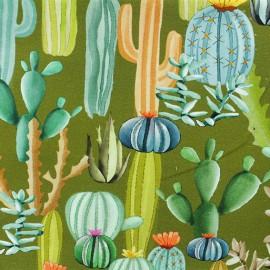Tissu sweat léger Cactus mania - vert x 10cm