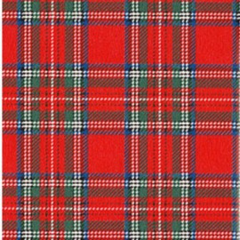 Fusible fabric - Kilt x 10 cm