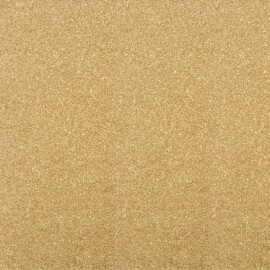 Glitter Fusible fabric - Light Gold x 10 cm