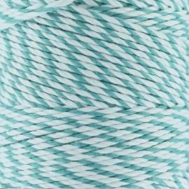 Ficelle Baker's Twine 2 mm celadon