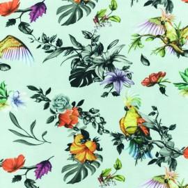 Jersey cotton fabric - Mint Cockatoo x 10 cm