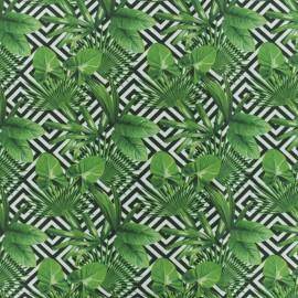 Tissu Popeline de coton Wild F -Blanc/vert x 10cm