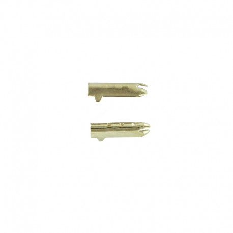 Embout de Lacet 17 mm - Doré