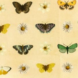 Tissu toile de coton - Daisy and Butterfly - Jaune x 10cm