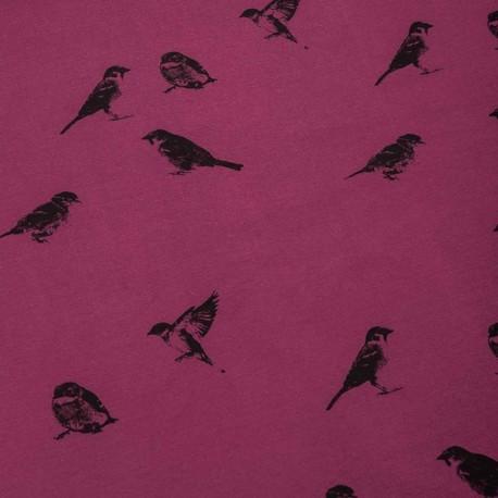 Sweatshirt fabric - Purple Birdy x 10 cm