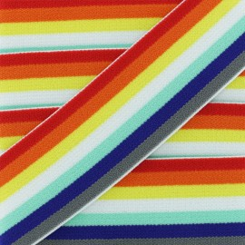 40 mm Belt Elastic Ribbon - Multi Retro Rainbow x 1m