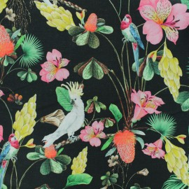 JERSEY FABRIC - black Cayenne Parrot x 10CM