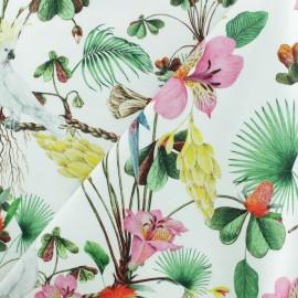 Tissu Jersey Perroquet de Cayenne - blanc cassé x 10cm