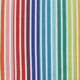 Outdoor Canvas Fabric 320cm - Rainbow Fréjus x 10cm