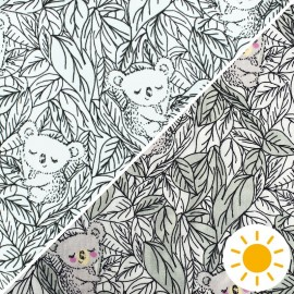 Tissu Jersey Photosensible Koala - vert x 10cm