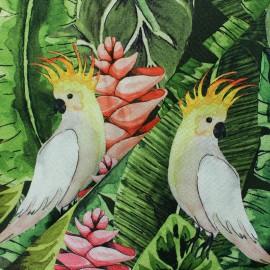 Cotton fabric - Green Parrot Paradise x 30cm