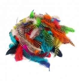 Real Dyed Feathers (1000 pcs)