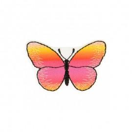 Thermocollant Papillon Irisé - B