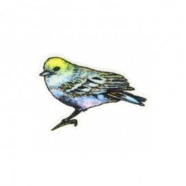 Animagic Iron-On Patch - Bird