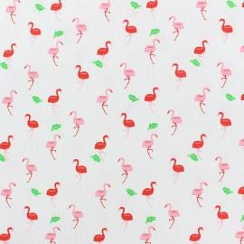 Tissu piqué de coton côtelé Flamingo - blanc x 10cm