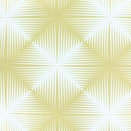Oilcloth fabric - black/white Carré optique x 10cm