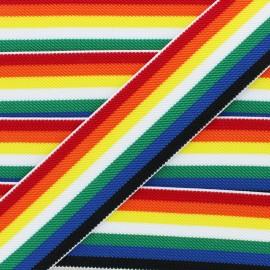 Ruban Élastique Colors 50 mm - Multi x 50cm