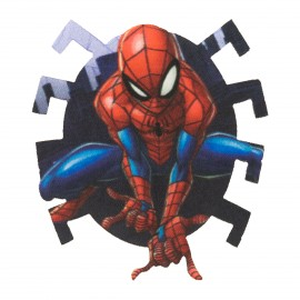 Spiderman Iron-On Patch