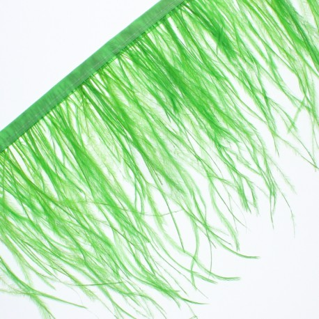 Galon Plumes d'Autruche Aviva 14 cm - Vert Pomme x 50cm