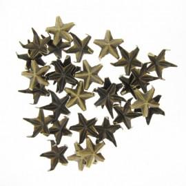 Griffes étoiles bronze antique