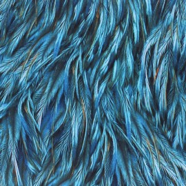 Hoffman cotton fabrics - Blue Proud as a Peacock x 10cm