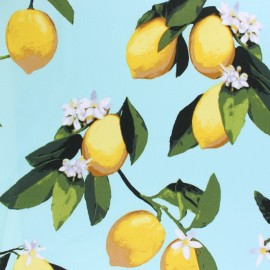 Lycra Gabardine Fabric - Navy blue Lemon tree x 10cm