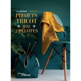 """Book """"Projet tricot avec 2 pelotes"""""""