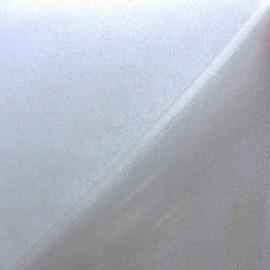 Cristal paillette holographique - transparent x 10cm