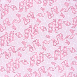 Tissu Dentelle élasthanne Estelle - blanc x 10cm