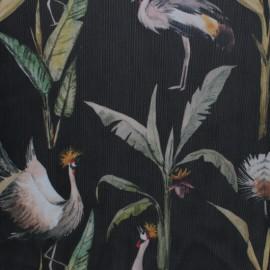 Tissu tulle souple Grue royale - noir  x 10cm