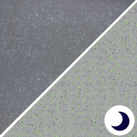 Tissu Jersey Phosphorescent Poppy Astronomy - gris foncé x 10cm