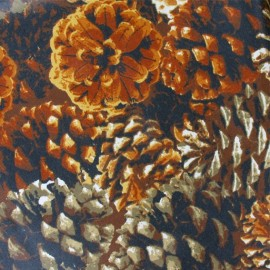 Tissu enduit  coton fond pommes de pin x 10cm